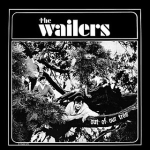 The Wailers - Out of Our Tree,  Etiquette Records 1966, photo by Jini Dellaccio